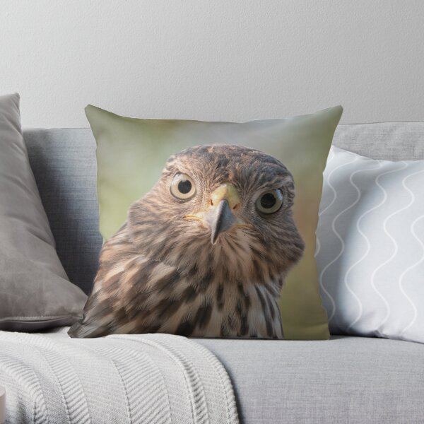 Young and curious Throw Pillow