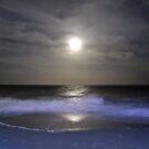 Misty Super Moon by ©Dawne M. Dunton