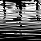 Ripples  by Elizabeth Rodriguez