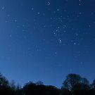 Winter Night by James Coard