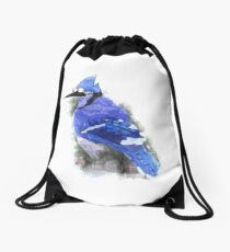 Mordecai the Blue Jay Drawstring Bag