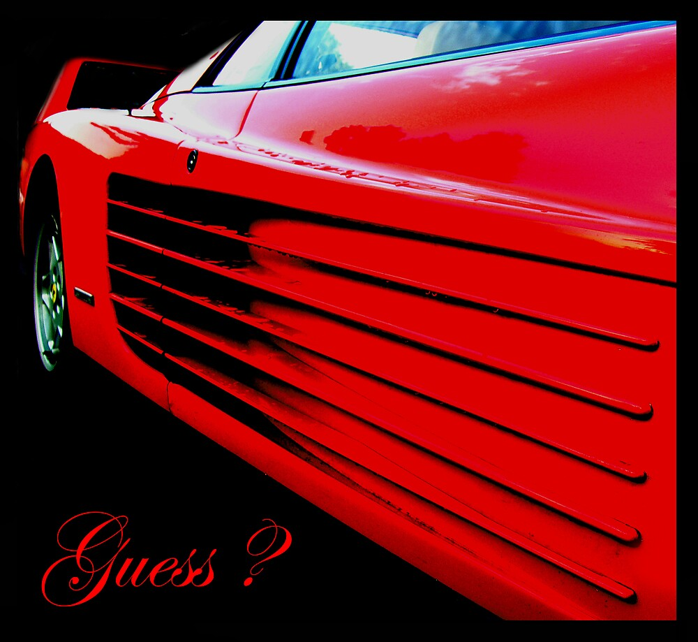 Guess ... by SNAPPYDAVE