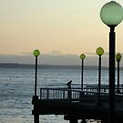 Sunset on Elliott Bay by Cathy Jones