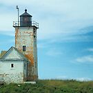 Two Bush Island Light, Spruce Head, Maine. by fauselr