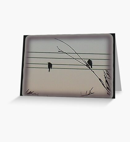 like a bird on the wire .... Greeting Card