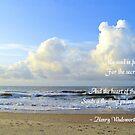 Secret Of The Sea by ©Dawne M. Dunton