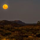 Full Moon Over the Ranges by Bette Devine
