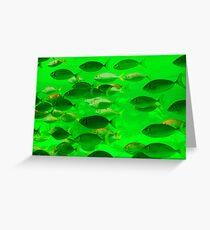 Fishy Business green Greeting Card