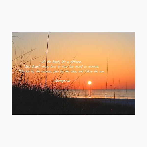 Follow The Sun Photographic Print