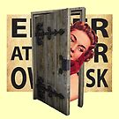 Enter at your own risk by Susan Ringler