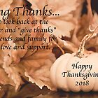 Giving Thanks This Thanksgiving Day by Sherry Hallemeier