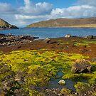 Over the sea to Skye by RamblingTog