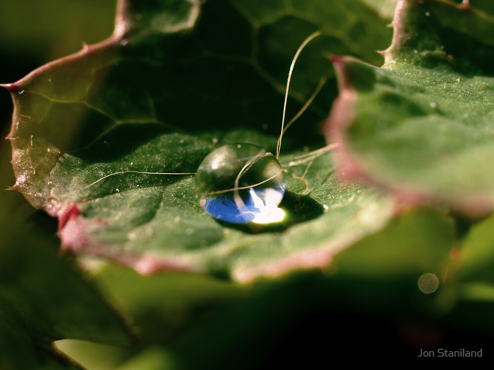 The Worlds In A Bubble by Jon Staniland