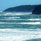 *Bell's Beach, Vic. Australia* by EdsMum