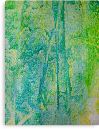 Rainforest Dawn by Kathie Nichols