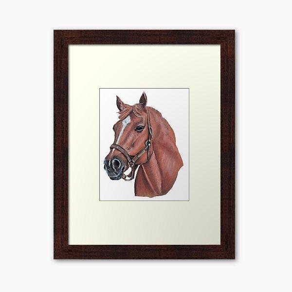 "Secretariado ""Big Red"", Race Horse Lámina enmarcada"