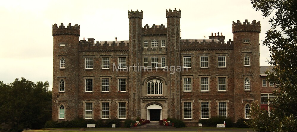 Gormanston Castle by Martina Fagan