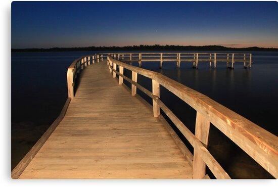 Lake Clifton Boardwalk At Dusk  by EOS20