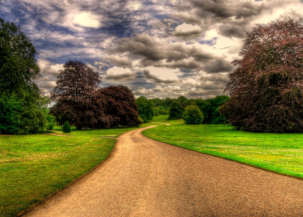 Road to... by Svetlana Sewell