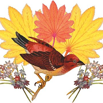 Victorian Red Sparrows and Autumn Leaves with Flowers by vinpauld