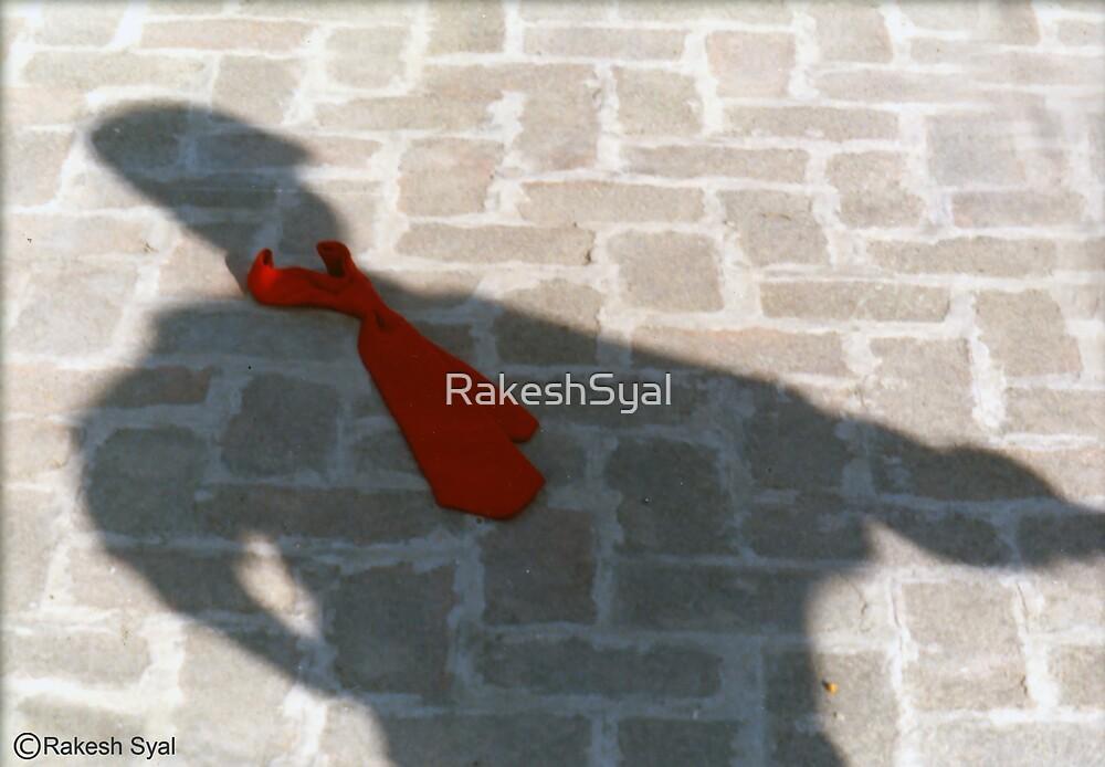 SMART SHADOW by RakeshSyal