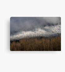 Snow in the Hills Canvas Print
