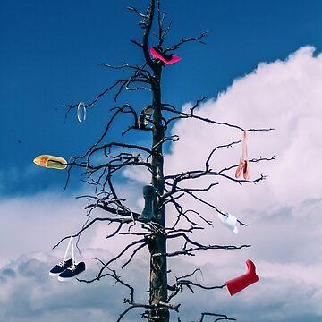 Shoe Tree by BigRedCurlyGuy