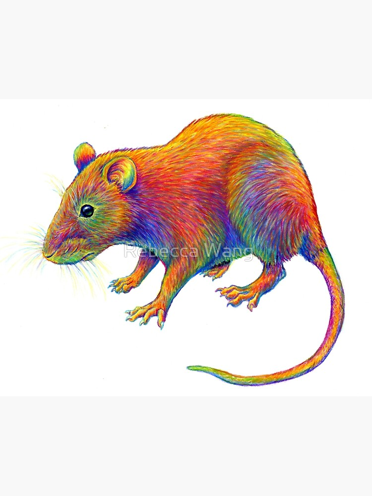 Psychedelic Rainbow Rat by lioncrusher