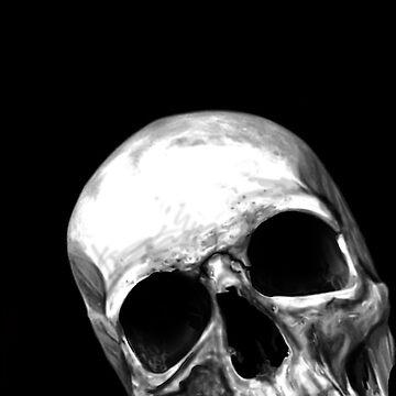 Multiple Skull Print on Black by aaronnaps