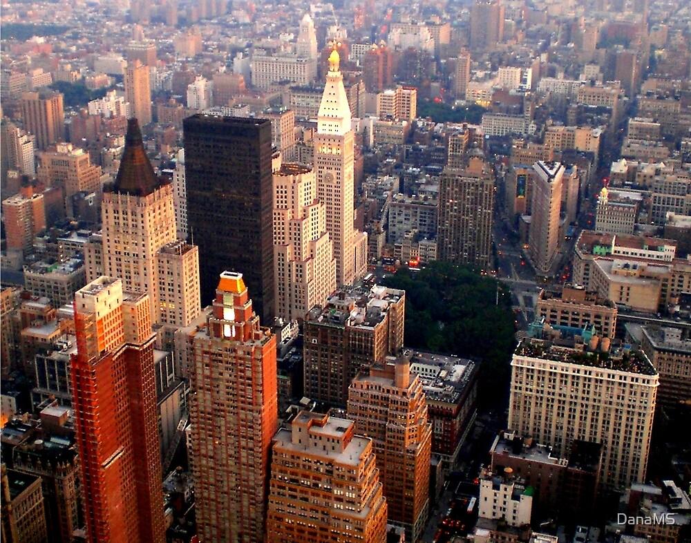 New York, New York... by DanaMS