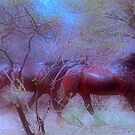 """For Dawn - Special request on """"My Horse Fantasy"""" by Magriet Meintjes"""