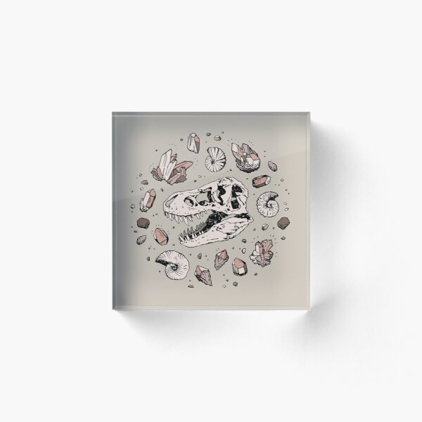 Geo-rex Vortex | Rose Quartz | Dinosaur Skull Fossil Art Acrylic Block