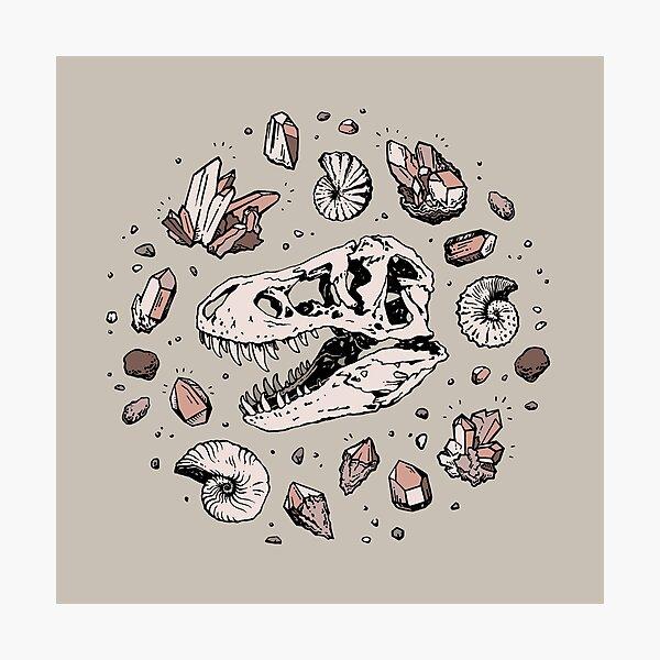 Geo-rex Vortex   Rose Quartz   Dinosaur Skull Fossil Art Photographic Print