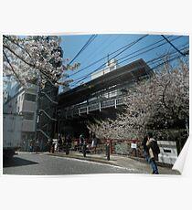 Japan Beautiful Photo Poster