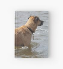 Dog Swimming in the Platte River, Denver, Colorado Hardcover Journal