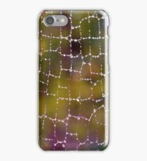 Web After The Rain iPhone Case/Skin