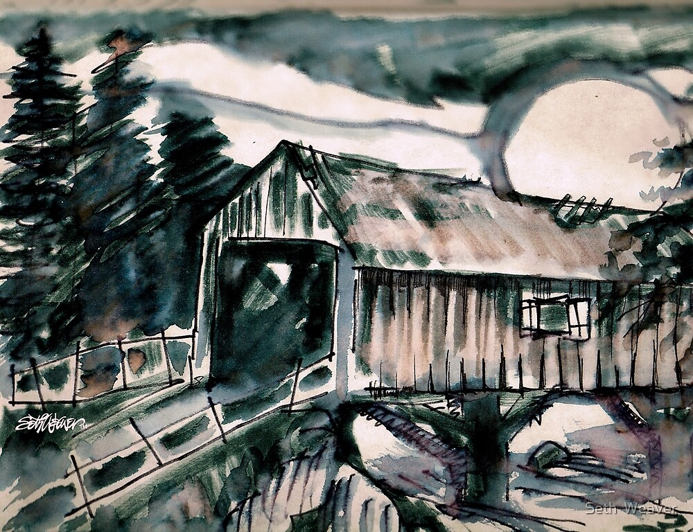 Covered Bridge Moon by Seth  Weaver
