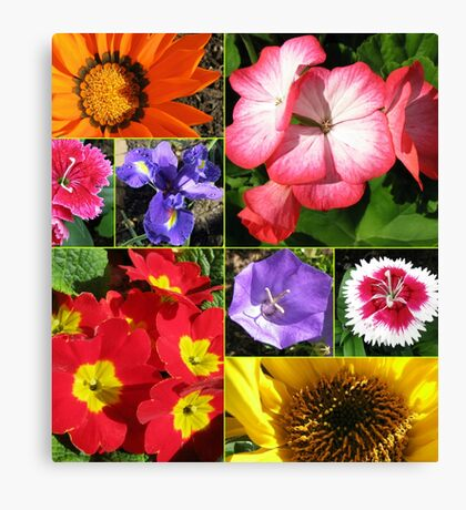 Sunkissed Blumen-Collage Leinwanddruck