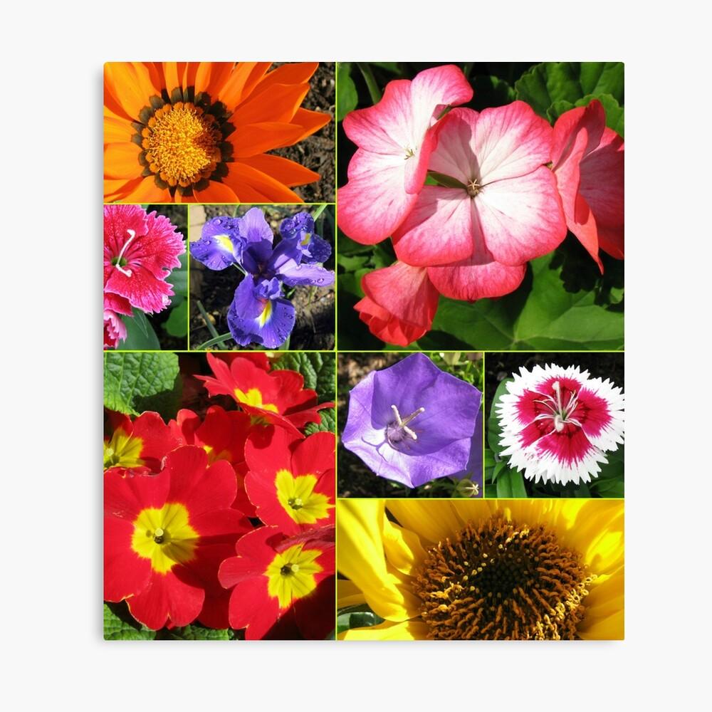 Sunkissed Blumen-Collage Leinwanddruck