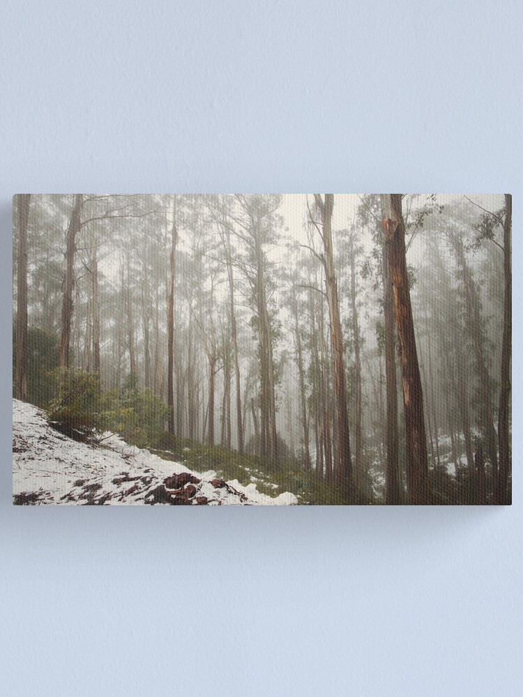 Alternate view of The Woods Canvas Print