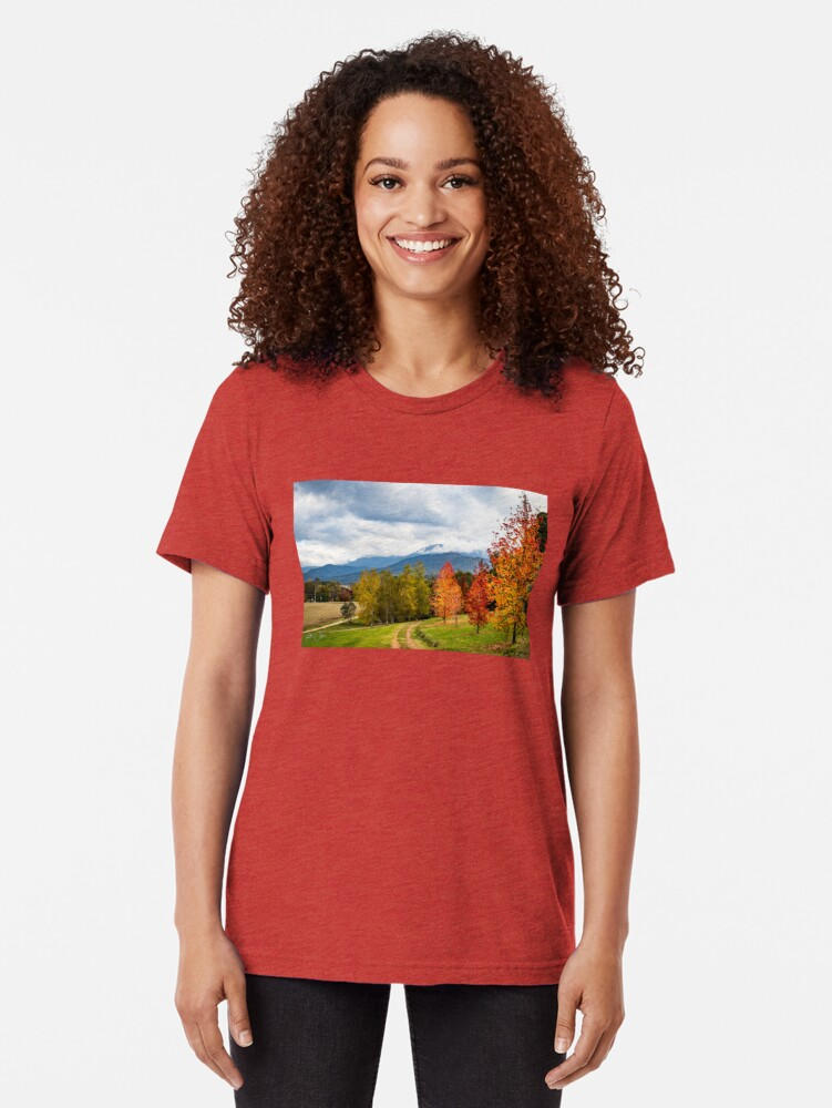 Alternate view of Road to heaven Tri-blend T-Shirt