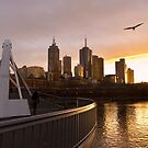 Seagulls over a Southbank sunrise by Norman Repacholi