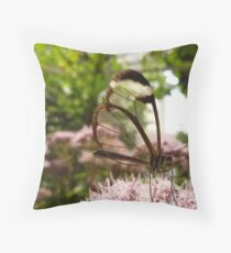 GLASSWING BUTTERFLY . Throw Pillow
