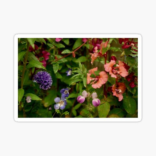 Wildflower Garden In The Morning Sticker