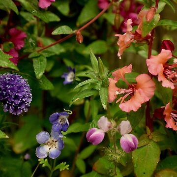 Wildflower Garden In The Morning by LyndaAnneArt