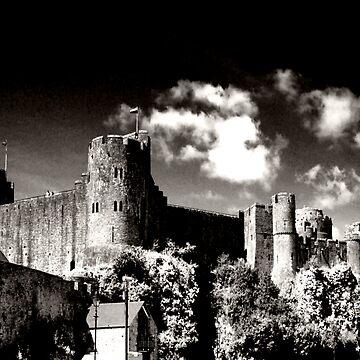Pembroke Castle by spottydog06