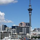 Auckland Cityscape, Photograph by Vic Potter by Vic Potter