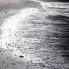 Silver Shore by Cora Wandel