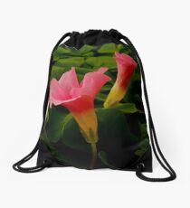 Pretty in Pink Drawstring Bag