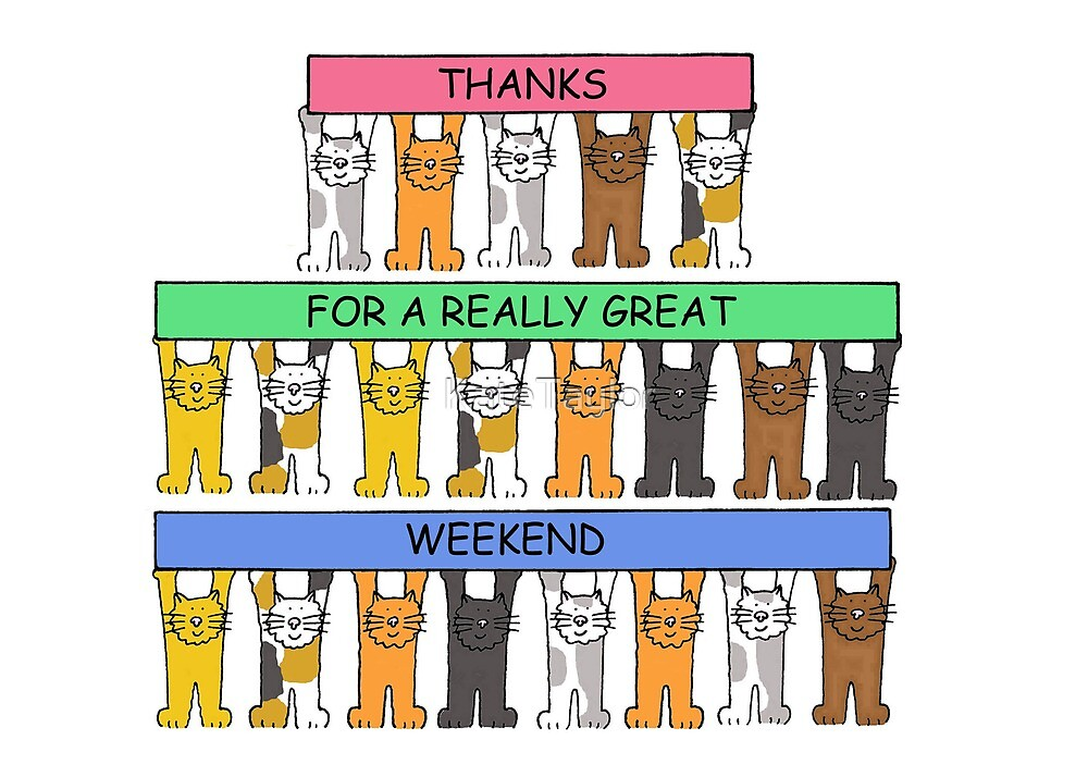 Thanks for a Great Weekend Cartoon Cats. by KateTaylor